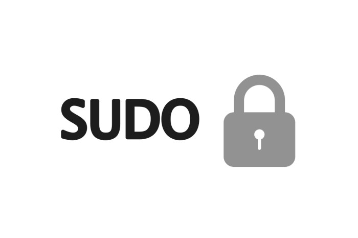 Critical Sudo Vulnerability Now Patched in CentOS 7 and RHEL 7