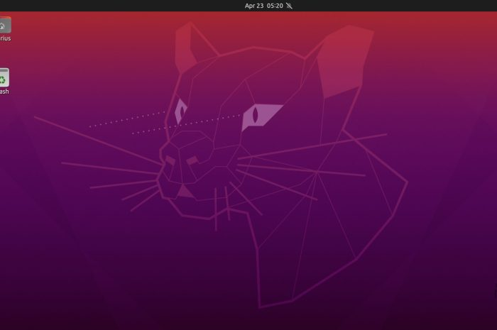 Ubuntu 20.04.1 LTS (Focal Fossa) Slated for Release on August 6th