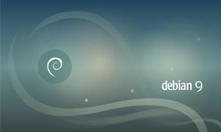 Debian GNU/Linux 9.13
