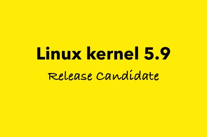 Linus Torvalds Announces First Linux Kernel 5.9 Release Candidate