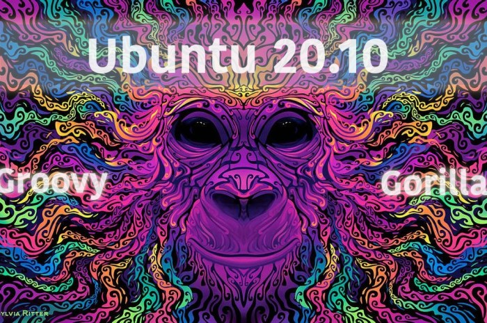 Ubuntu 20.10 (Groovy Gorilla) Enters Feature Freeze, Beta Expected on October 1st