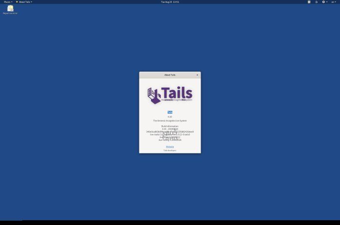 Tails 4.10 Anonymous OS Released with Updated Tor and Tor Browser, Linux 5.7.10