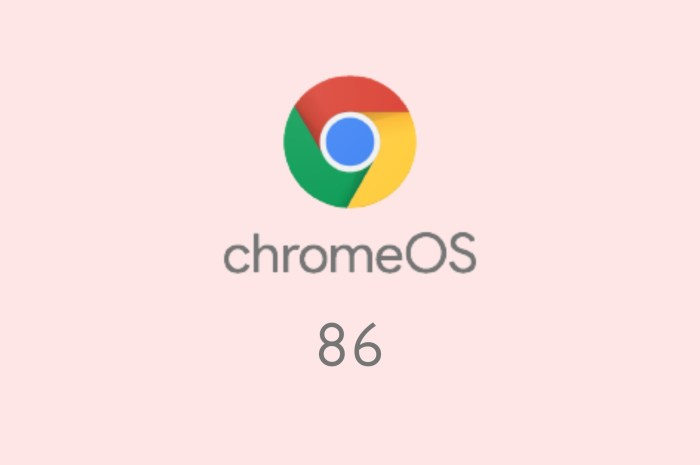 "Chrome OS 86 Rolls Out with Linux Support for Debian GNU/Linux 10 ""Buster"""