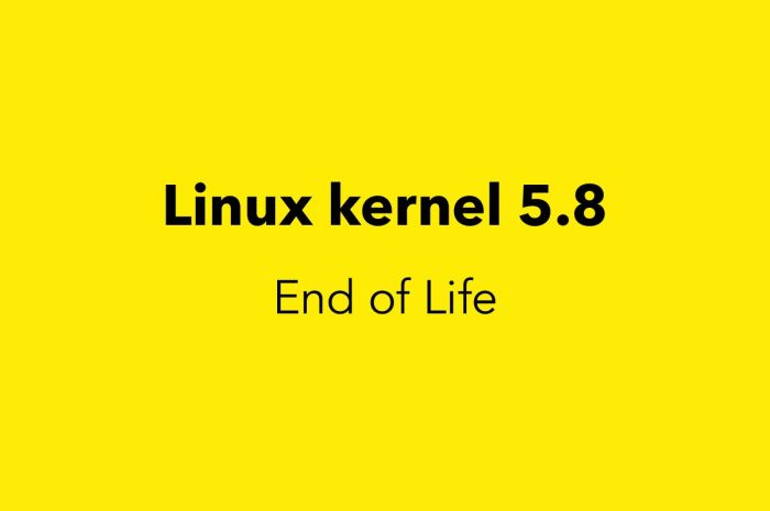 Linux Kernel 5.8 Reaches End of Life, Users Urged to Upgrade to Linux 5.9 Series