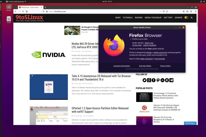 Firefox 86 Enters Beta with Multiple Picture-in-Picture and AVIF Support by Default