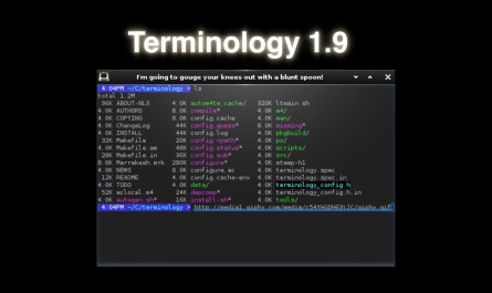Terminology 1.9
