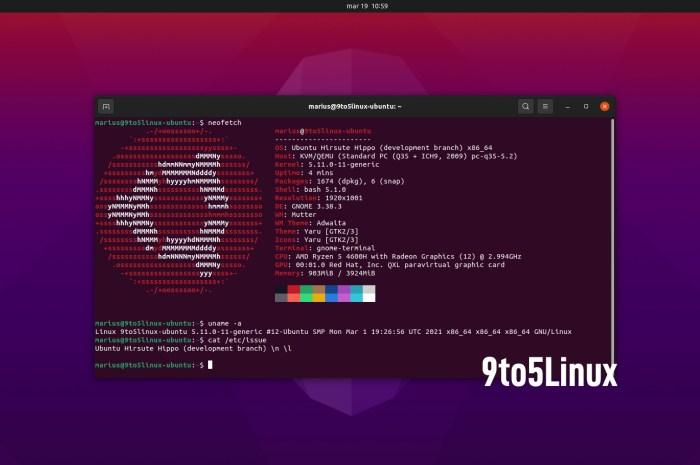Ubuntu 21.04 (Hirsute Hippo) Is Now Powered by Linux Kernel 5.11