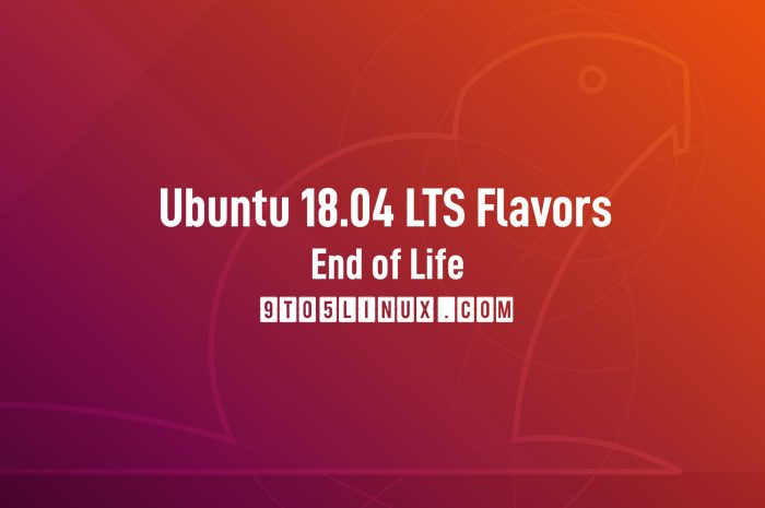Ubuntu 18.04 Flavors Reach End of Life, Users Urged to Upgrade to 20.04 LTS
