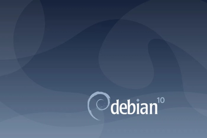 """Debian GNU/Linux 10 """"Buster"""" Users Get New Linux Kernel Security Update, 4 Flaws Patched"""