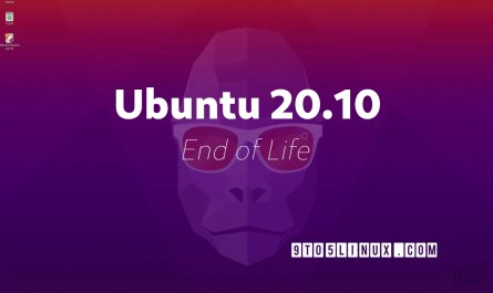 Ubuntu Groovy Gorilla