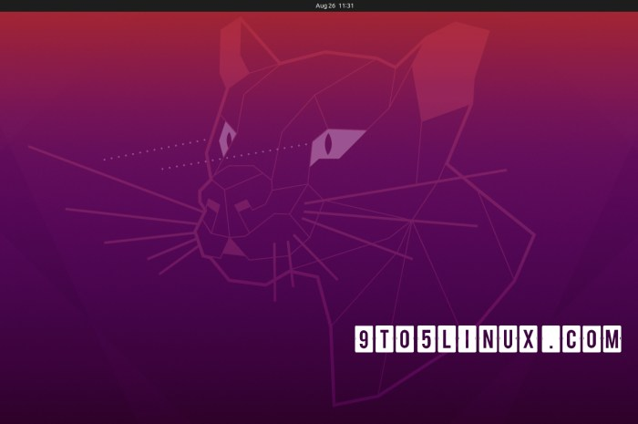 Ubuntu 20.04.3 LTS (Focal Fossa) Is Out with Linux Kernel 5.11 and Mesa 21 Graphics Stack