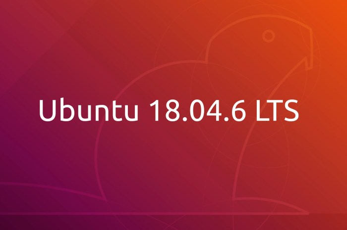 Ubuntu 18.04.6 LTS Released with BootHole Patches, Latest Security Updates