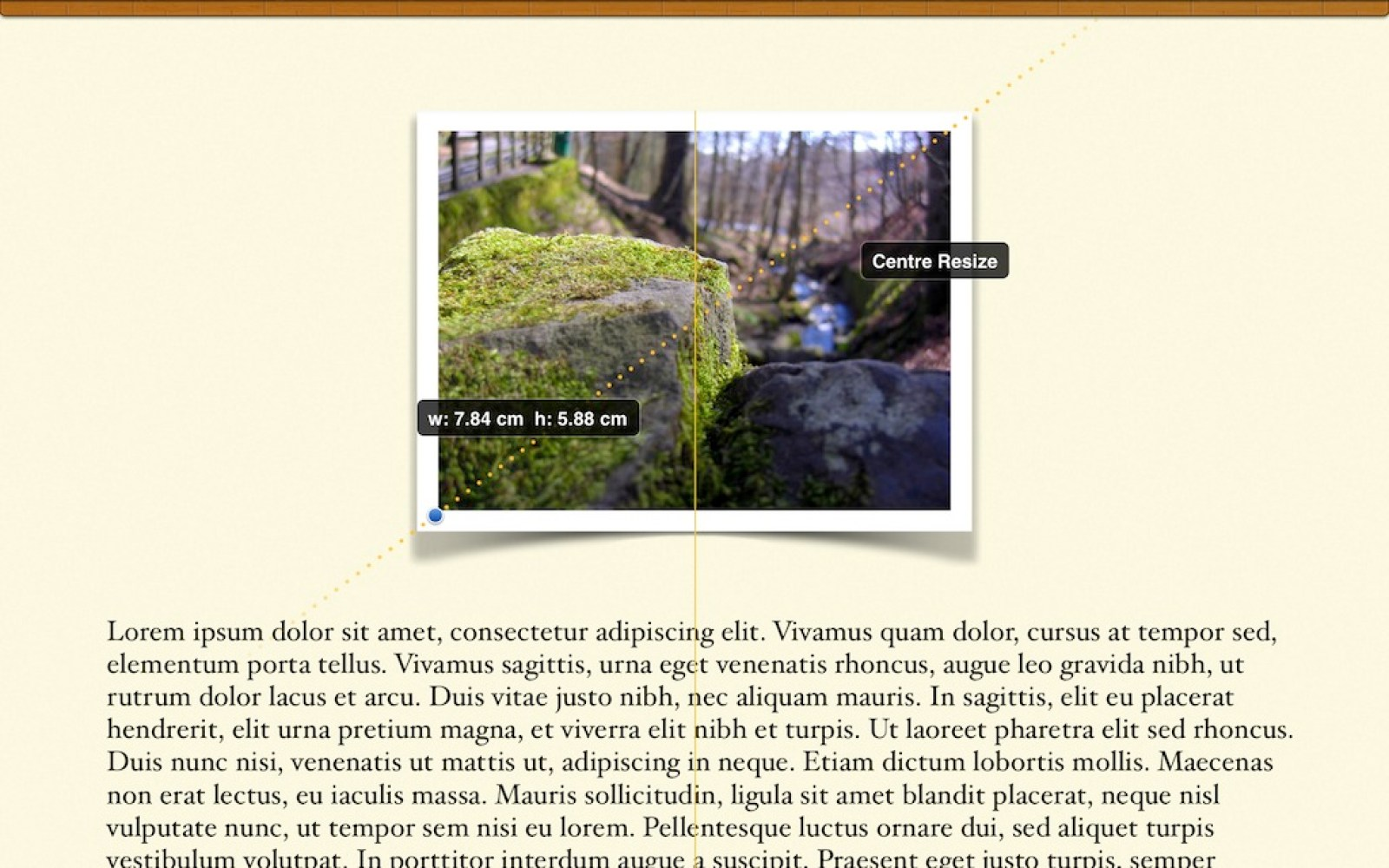 Tips: Use little-known gestures to arrange photos and shapes in iOS Pages