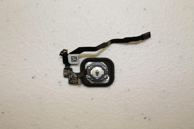 iPhone5s-5c-teardown-08