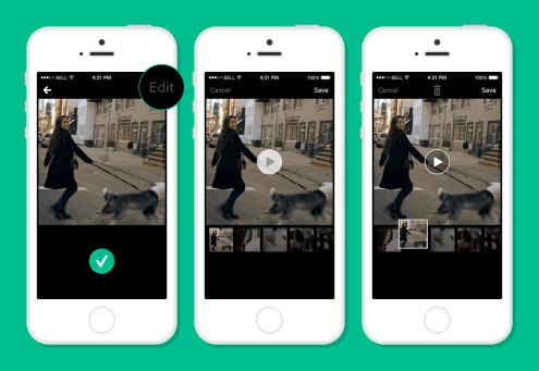 Vine-Editing-Preview