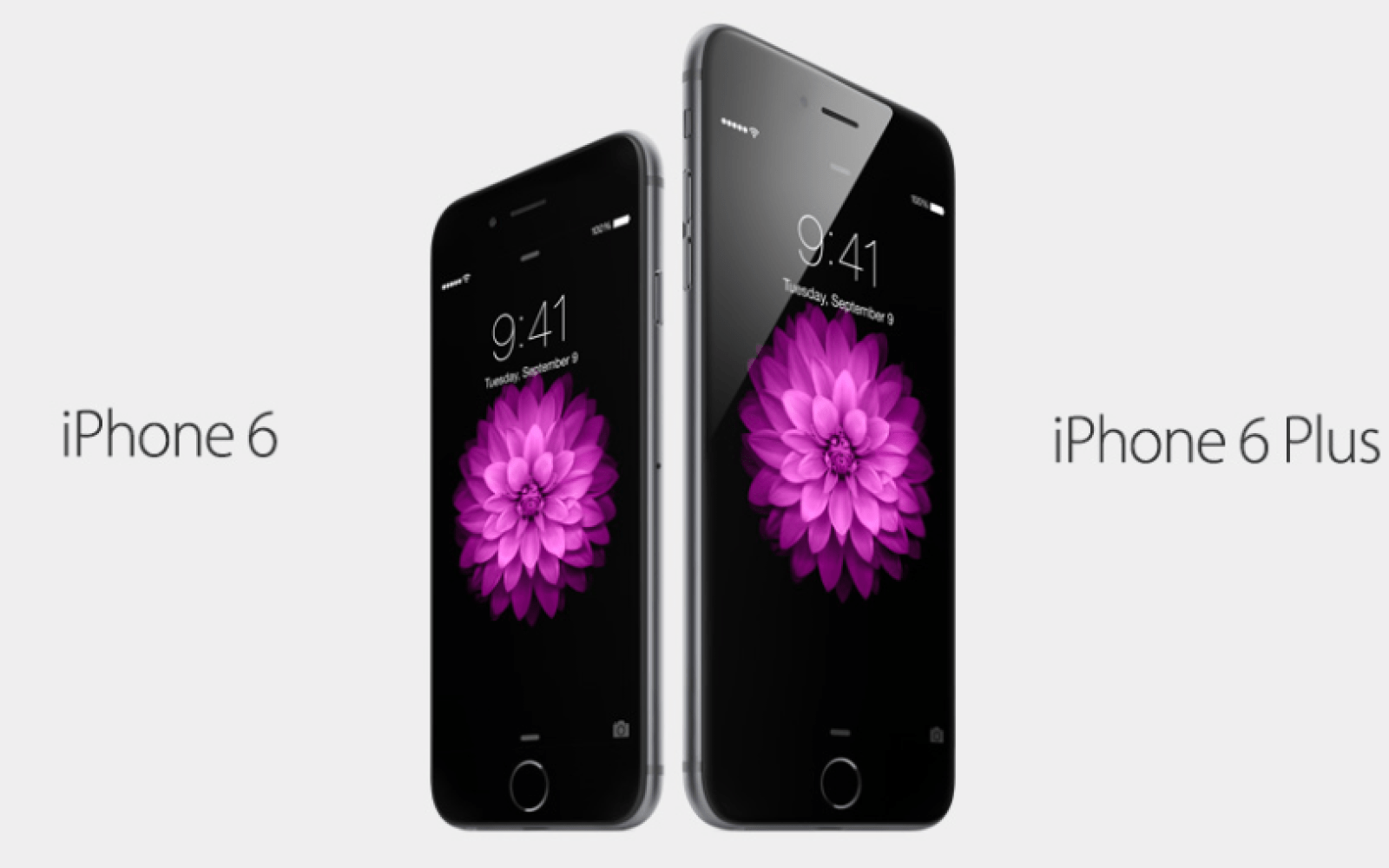 Review roundup: Everyone loves the iPhone 6 and 6 Plus
