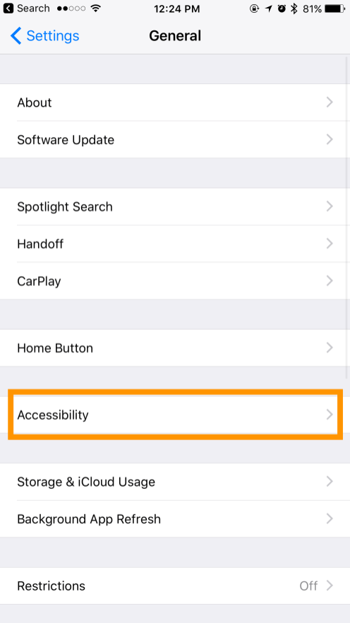 General > Accessibility