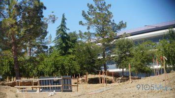 Apple-Park-Campus-2-June-landscaping-017