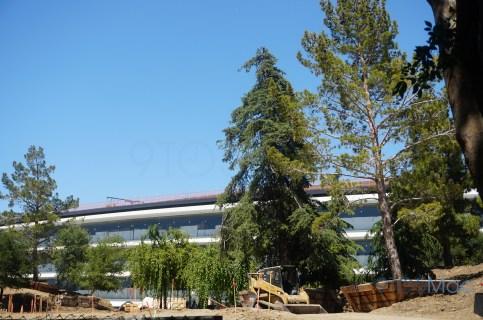 Apple-Park-Campus-2-June-landscaping-09