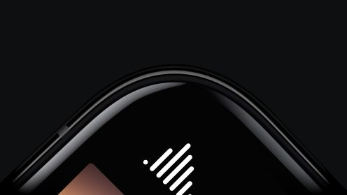 00006Halide 1.5 iPhone X