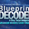 Real Social Dynamics Blueprint Decoded- 9WSO Download