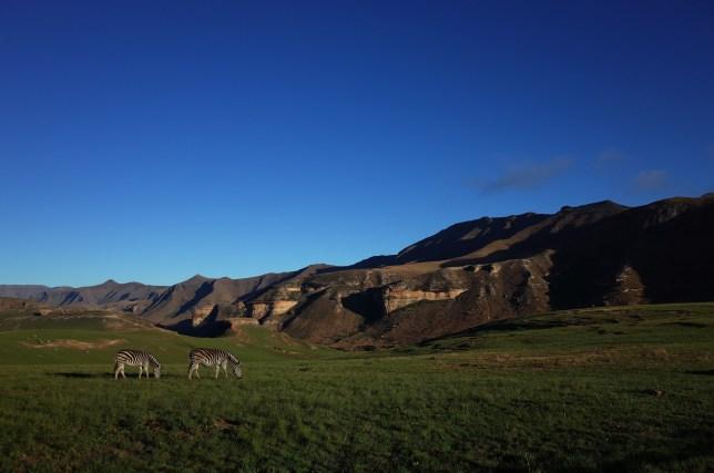 Golden Gate Highlands, Drakensberg