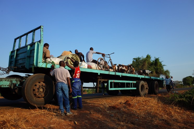 Malawi Hitch