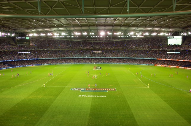 Etihad Stadium Cricket Melbourne