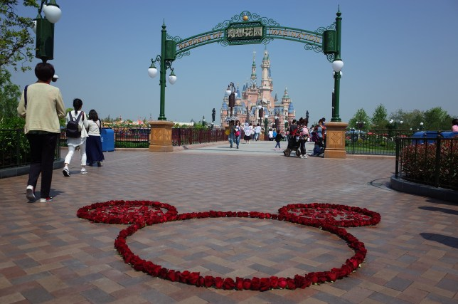 Shanghai Disney flower Mickey