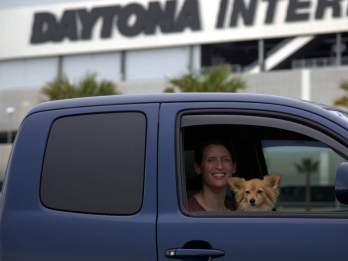Daytona dog