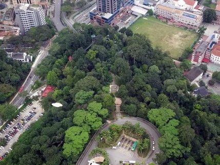Canopy Skywalk aerial view