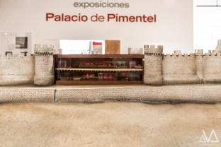 Expo Roberto Valle - Museo del Vino Peñafiel