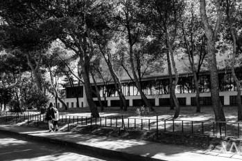 ava-ruben_hc-colegio-de-san-agustin-23