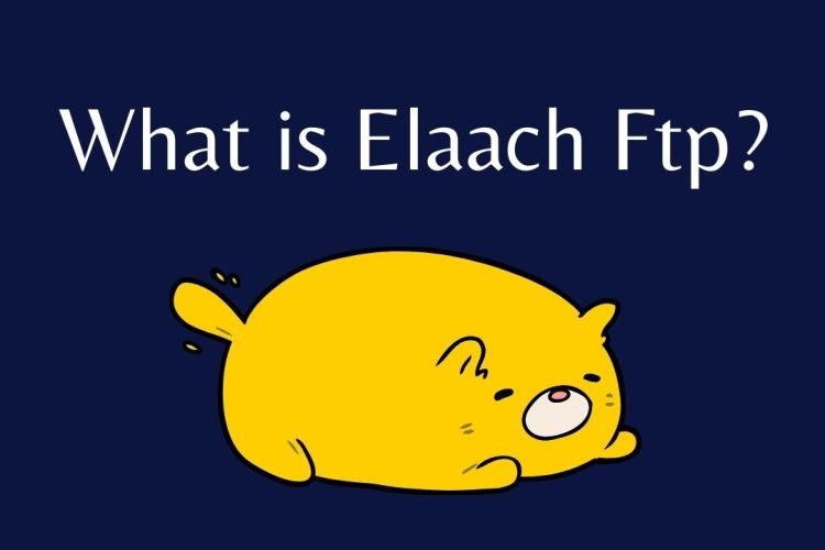 What is Elaach Ftp