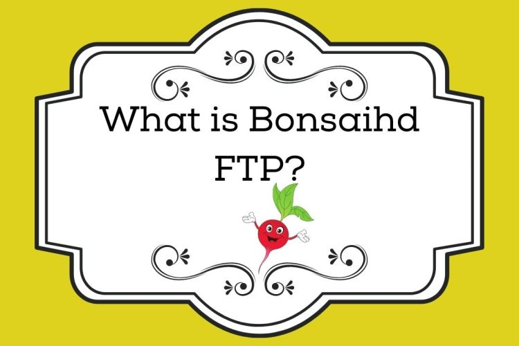 What is Bonsaihd FTP