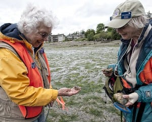 Maradel Gale and Gerlind Jenkner make a find at low-tide in Eagle Harbor