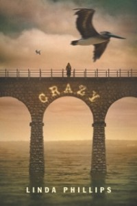The cover of the softback version of the young adult's book, Crazy