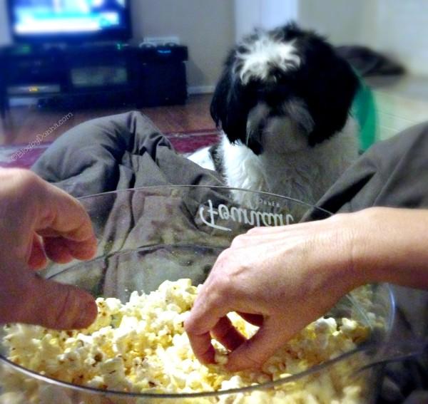 ACT II Movie Night 1 #popcorn