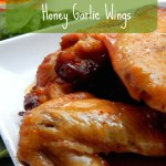 Slow cooker honey garlic wings recipe