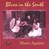 Mario Aguirre: Blues in the South