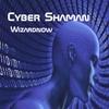 Wizardnow: Cyber Shaman