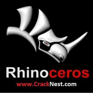 Rhino Crack