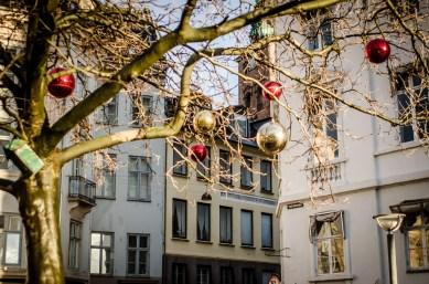 Copenhagen Dec 2015 (23 of 66)