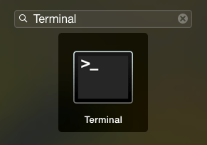 type Terminal in Mac Launchpad