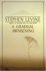 A Gradual Awakening ~ Stephen Levine