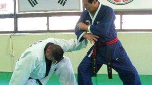 Hapkido master applying a grab defense