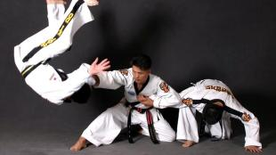 Hapkido arm bar plus throw.