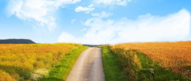 The bright path.