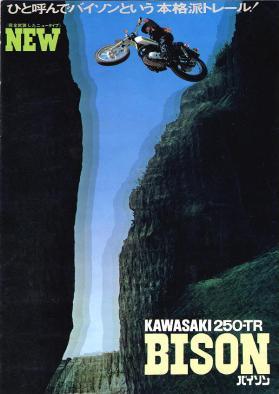 Kawasaki250TRBison-1970-F8 catalog01