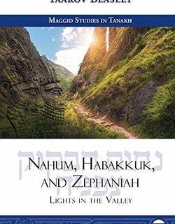 Nahum, Habakkuk, and Zephaniah: Lights in the Valley by Yaakov Beasley